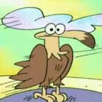 حیات وحش - چرا عقابها هستند؟